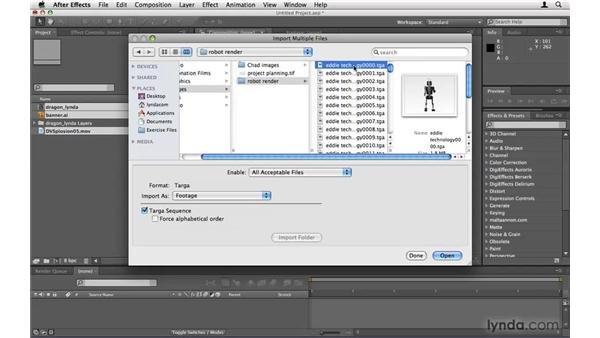 Importing elements correctly: After Effects Project Workflow
