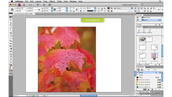 Proportional Place: InDesign CS4 Power Shortcuts