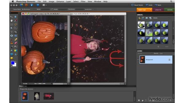 Dividing scanned photos: Photoshop Elements 8 for Mac Essential Training