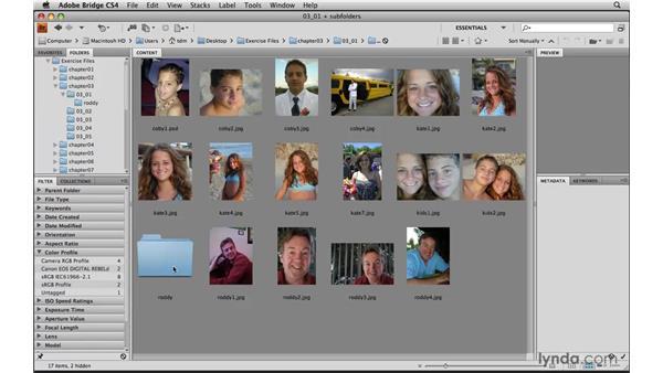 Touring Bridge CS4: Photoshop Elements 8 for Mac Essential Training
