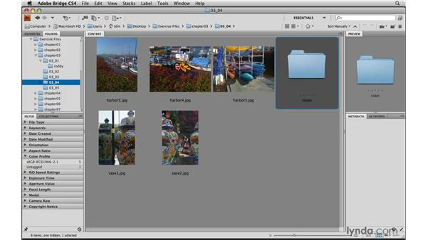 Moving, deleting, and hiding photos: Photoshop Elements 8 for Mac Essential Training