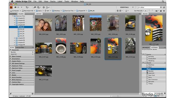 Tagging photos with keywords: Photoshop Elements 8 for Mac Essential Training