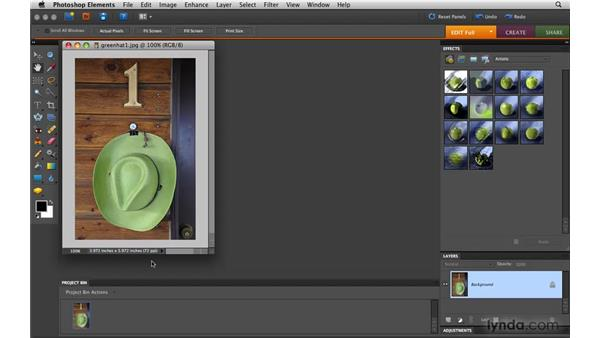 Touring the Full Edit workspace: Photoshop Elements 8 for Mac Essential Training