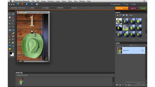 Using tools: Photoshop Elements 8 for Mac Essential Training