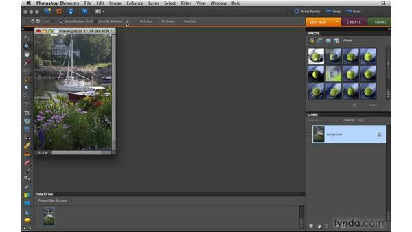 Zooming and navigating: Photoshop Elements 8 for Mac Essential Training