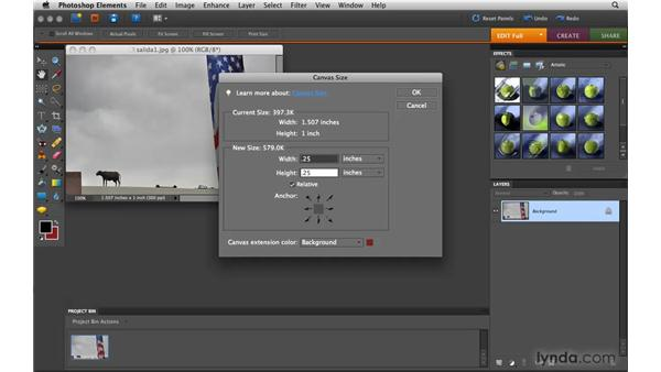 Enlarging the canvas: Photoshop Elements 8 for Mac Essential Training