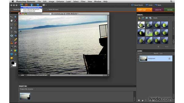 Cropping and straightening an image: Photoshop Elements 8 for Mac Essential Training