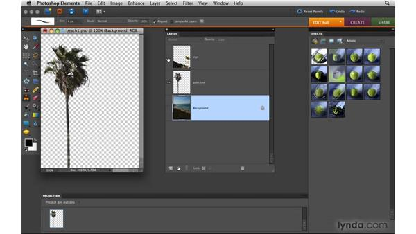 Understanding layers: Photoshop Elements 8 for Mac Essential Training