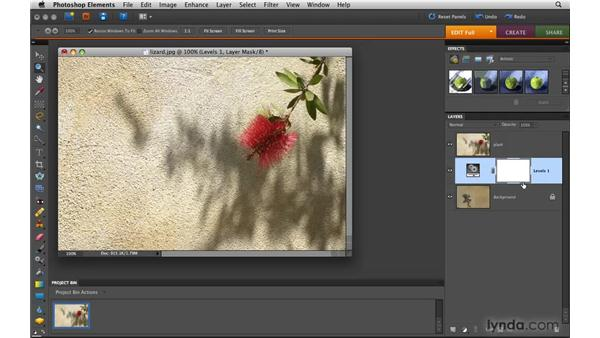 Combining images with layer masks: Photoshop Elements 8 for Mac Essential Training