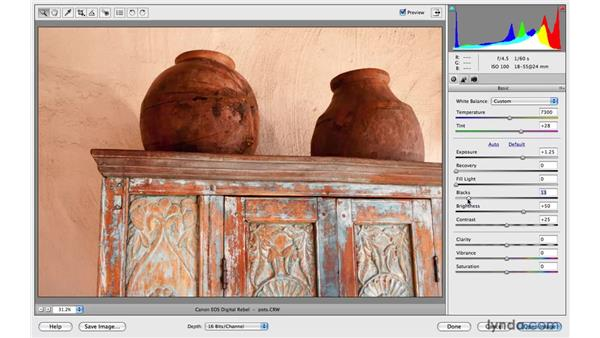 Working with raw photos: Photoshop Elements 8 for Mac Essential Training