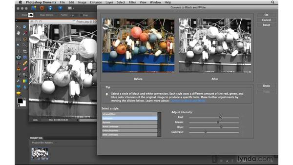 Converting color to black and white: Photoshop Elements 8 for Mac Essential Training