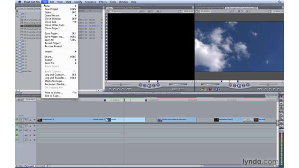 Creating self-contained clips: Color 1.5 Essential Training