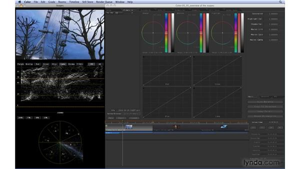 Understanding how to read Scopes: Color 1.5 Essential Training