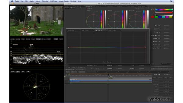 Leaving and removing colors using the Saturation curve: Color 1.5 Essential Training