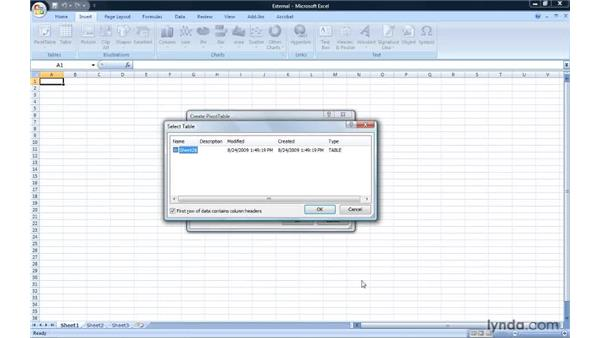 Connecting to an external data source: Excel 2007: Pivot Tables for Data Analysis