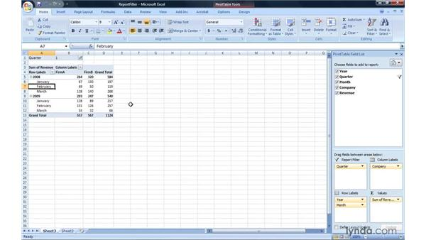 Filtering with report filter fields: Excel 2007: Pivot Tables for Data Analysis