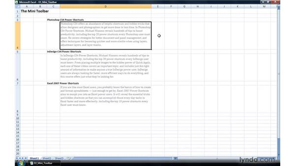 Accessing the Mini toolbar: Excel 2007 Power Shortcuts