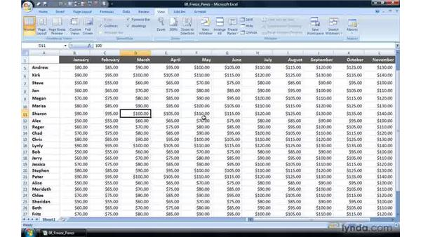 Keeping row and column headings in view: Excel 2007 Power Shortcuts