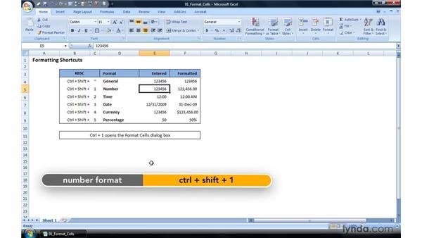 Quick formatting shortcuts: Excel 2007 Power Shortcuts