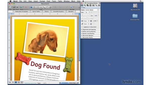 Setting page options: Office 2008 for Mac: Small Business Projects