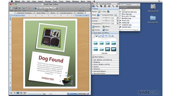 Entering content: Office 2008 for Mac: Small Business Projects