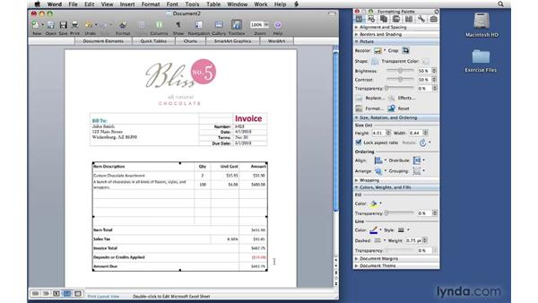 Using the invoice template: Office 2008 for Mac: Small Business Projects