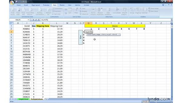 Tabulating information on multiple criteria with COUNTIFS, SUMIFS, and AVERAGEIFS: Excel 2007: Advanced Formulas and Functions