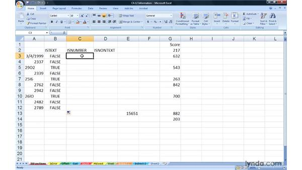 Working with the IS information functions: Excel 2007: Advanced Formulas and Functions