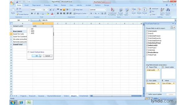 Dividing data by customer using report filters: Excel 2007: Creating and Managing Invoices
