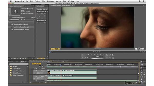 Capturing ambient audio: Premiere Pro CS4 Beyond the Basics