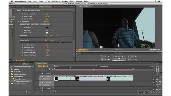 Using scopes: Premiere Pro CS4 Beyond the Basics