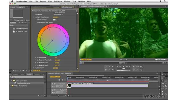 Primary color correction: Premiere Pro CS4 Beyond the Basics