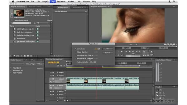 Normalizing audio across multiple clips: Premiere Pro CS4 Beyond the Basics