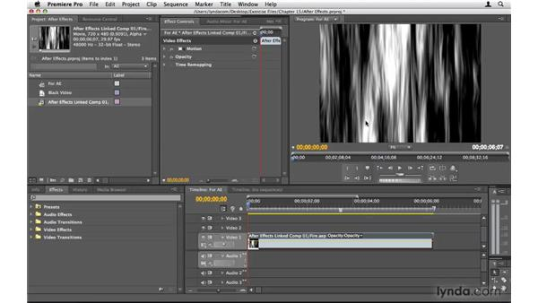 Working with After Effects: Premiere Pro CS4 Beyond the Basics