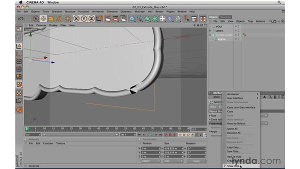 Extruding splines from an imported Illustrator file: CINEMA 4D R11.5 Essential Training
