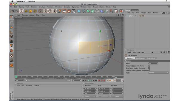 Introducing polygon modeling: CINEMA 4D R11.5 Essential Training