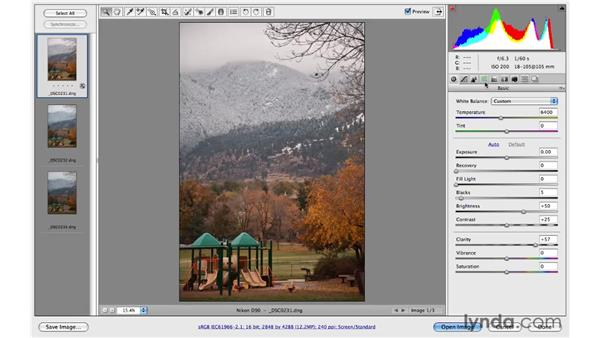 Preparing photos in Adobe Camera Raw: Photoshop CS4: Image Compositing for Photographers