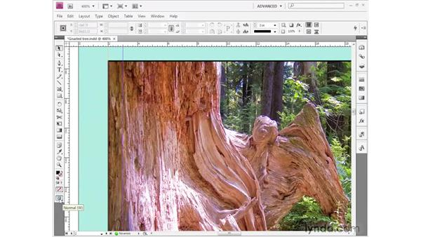 Framing a picture: InDesign CS4 Getting Started