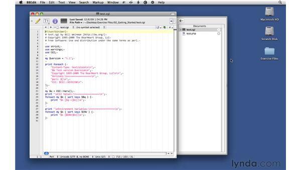 Introducing the test.cgi script: CGI Essential Training