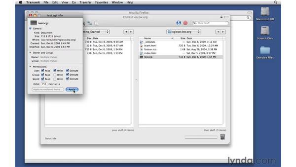 Installing the test.cgi script on a Unix server: CGI Essential Training