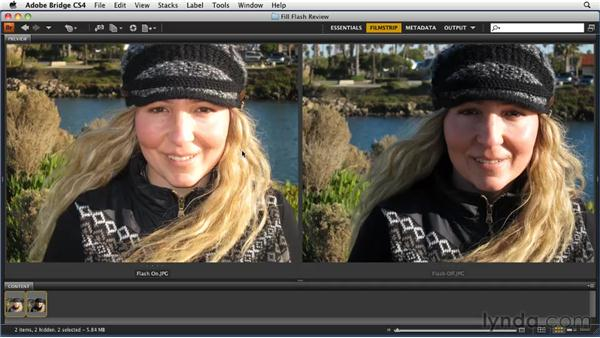 Reviewing the fill flash shots: Getting Pro Results from a Compact Camera