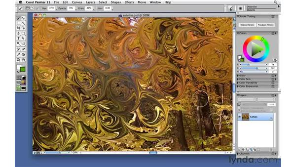 Distorting an image with the Distortion brush: Corel Painter 11: Mastering Brushes