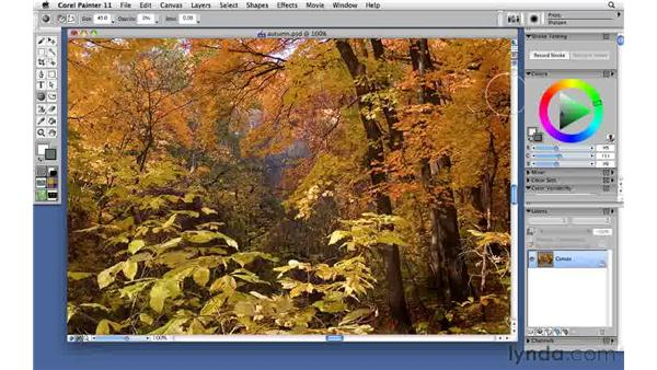 Making common photo adjustments with the Photo category: Corel Painter 11: Mastering Brushes