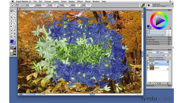 Painting with the image hose: Corel Painter 11: Mastering Brushes