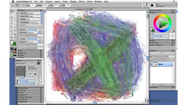 Fine tuning and naming the new variant: Corel Painter 11: Mastering Brushes