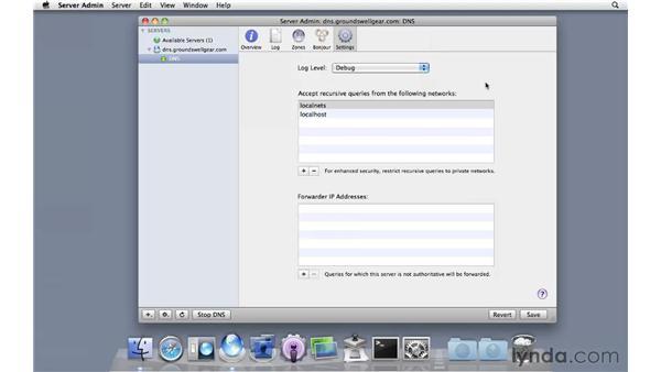 Setting up additional DNS settings: Mac OS X Server 10.6 Snow Leopard Essential Training