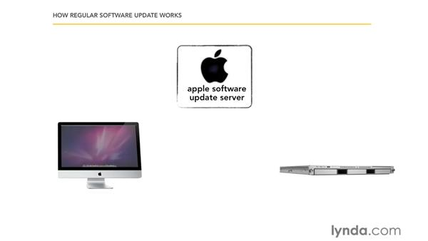 How a software update server works: Mac OS X Server 10.6 Snow Leopard Essential Training