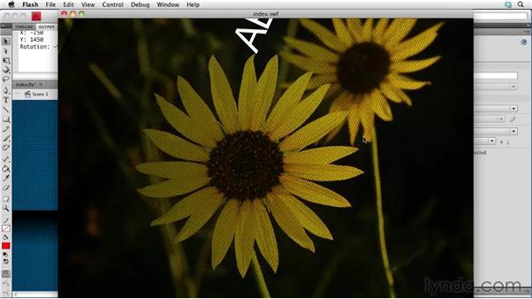 Applying professional transitions: Creating a Portfolio Web Site Using Flash CS4 Professional