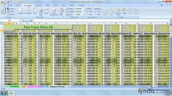 Adding a background image to a worksheet: Excel 2007: Advanced Formatting Techniques