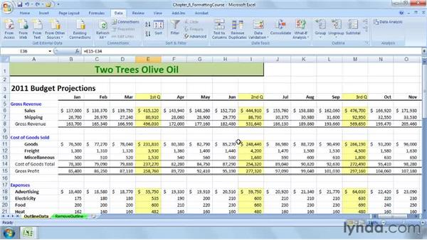 Setting up data for outlining: Excel 2007: Advanced Formatting Techniques
